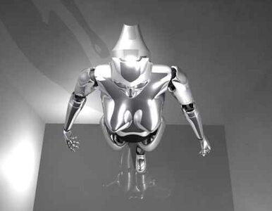 80 robotów i jeden dzień zabawy