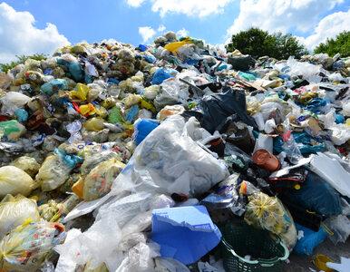 Ogromne kary za śmiecenie w miejscach publicznych. Sięgną 5 tys. zł
