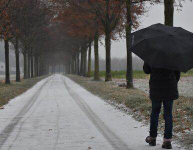 Środa bez opadów w całym kraju. W kolejnych dniach chłodno, ale pogodnie