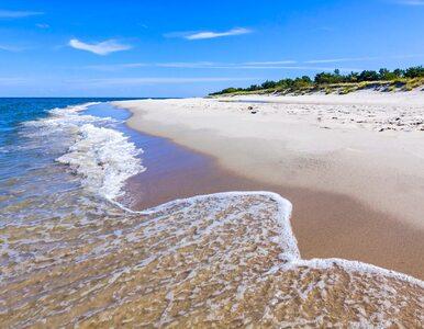 Polskie plaże posprzątają dwie firmy