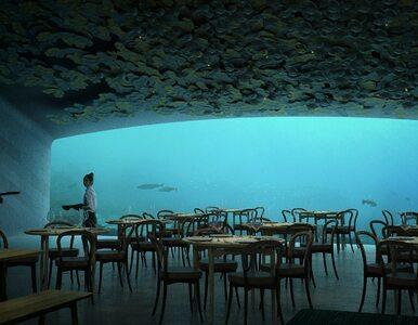 Powstaje największa na świecie podwodna restauracja. Zdjęcia działają na...