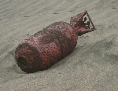 Znalazł w lesie 22 niemieckie bomby ważące ponad tonę