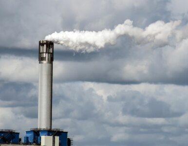 Zanieczyszczone powietrze zabija coraz częściej