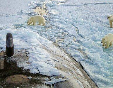 Rosja walczy z Kanadą o złoża Arktyki