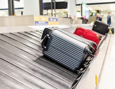 Zmiana procedur na lotniskach. Czego powinni spodziewać się pasażerowie?