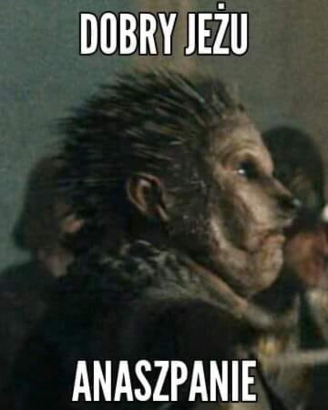mem o wiedźminie