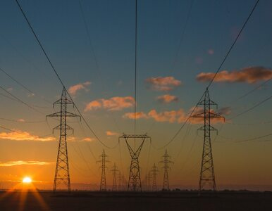 Niższe ceny energii? Ostatni moment na złożenie oświadczenia