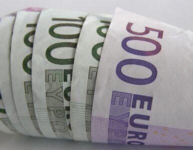 """""""Strefa euro potrzebuje wyższej inflacji"""""""