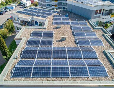 Odnawialne źródła energii coraz bardziej popularne w polskich miastach