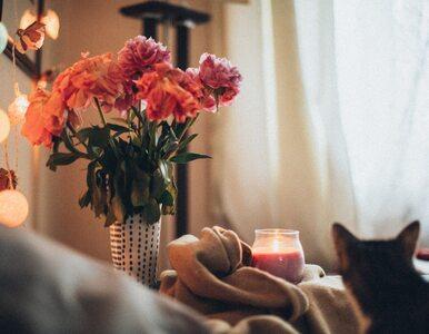 Dlaczego warto trzymać cięte kwiaty w domu? Mają one wpływ na zdrowie