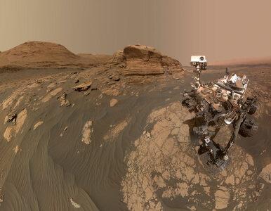 Selfie z Marsa. Łazik Curiosity przypomniał o swoim istnieniu