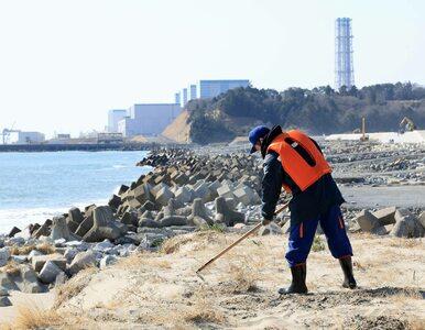 Skażona woda z Fukushimy trafi do oceanu. Japonia podjęła decyzję