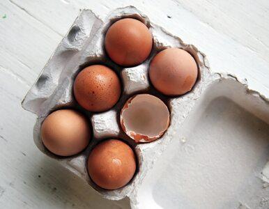 Cholesterol w naszej diecie – bać się go czy nie?
