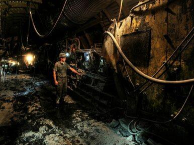 Rząd chce wprowadzić abonament węglowy. Projekt skierowano do konsultacji