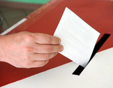 Wybory uzupełniające do Senatu. Frekwencja: 4,63 procent