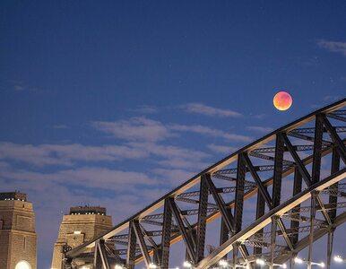 Jak wyglądało zaćmienie Księżyca na Sumatrze? Spektakularne zjawisko na...