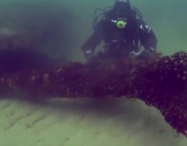 """Niezwykłe odkrycie na dnie morza. """"To bałtycka Atlantyda"""""""