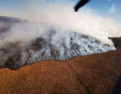 """Pożar Biebrzańskiego PN. """"To ogromny kataklizm. Niektóre zmiany mogą być..."""