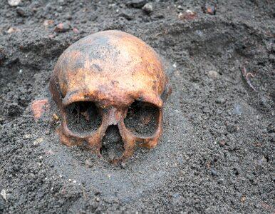 Małopolska. 12-latka pochowana z czaszką ptaka w ustach. Naukowcy...