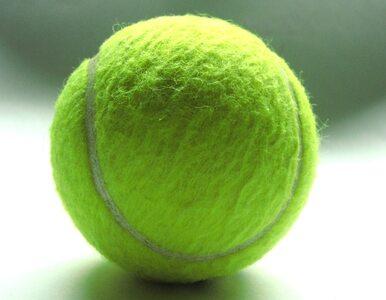Turniej WTA w Toronto: Williams zmiotła z kortu Cirsteę