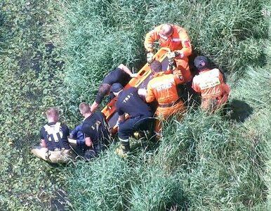 Tychy. 63-latka utknęła w bagnie. Wypatrzyło ją oko drona. Jest nagranie!