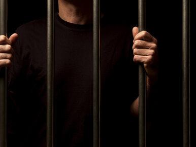 Koniec bezczynności skazanych. Dzięki rządowemu programowi rośnie...