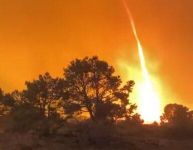 Ogromne pożary w USA, w Nevadzie zaobserwowano wir ognia. Jest nagranie