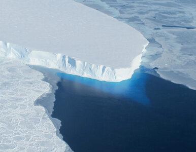 """Niepokojące dane z """"lodowca zagłady"""". Naukowcy zaskoczeni temperaturą"""
