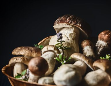 Pasteryzowanie grzybów. Czy wiesz, że trzeba robić to dwa razy?