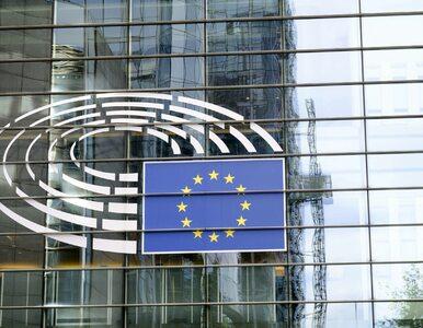 Wybory do PE 2019. Kto dostał się do europarlamentu z okręgu nr 12...