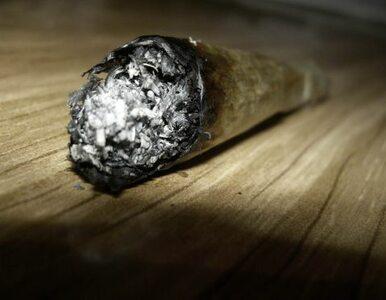 Marihuana nieodwracalnie niszczy mózg