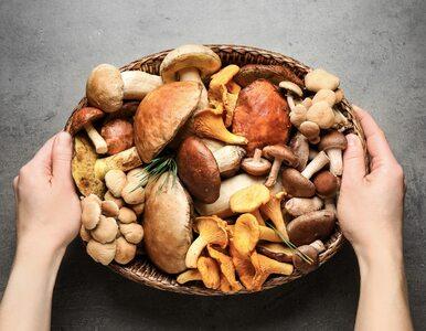 10 najzdrowszych grzybów na świecie. Które z nich są najbardziej...