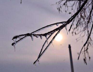 Koniec arktycznych mrozów w całej Polsce