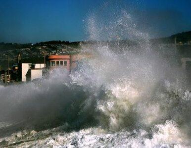 Japonia: skażenie wody morskiej 4385 razy ponad normę