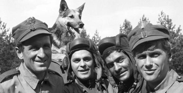 """QUIZ. Jak dobrze znasz serial """"Czterej pancerni i pies""""? Sprawdź swoją..."""