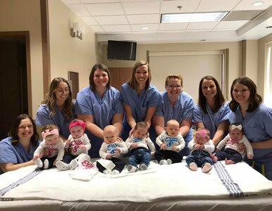 Osiem pielęgniarek z jednego oddziału niemal równocześnie urodziło....