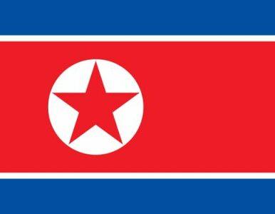 Znaleziono drona z Korei Północnej?