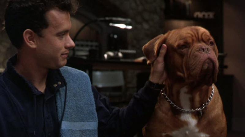 Tom Hanks zagrał Turnera, a pies to...