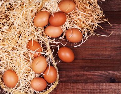 Oto prosty sposób na oddzielenie żółtka od białka. Potrzebujesz tylko......