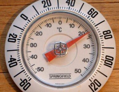 Politechnika Gdańska chce wiedzieć, jak wyglądał Fahrenheit