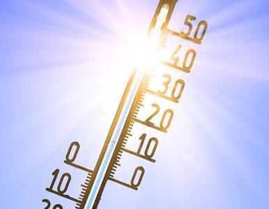 Rekordowe temperatury w Polsce. Zobacz, jak przetrwać upał