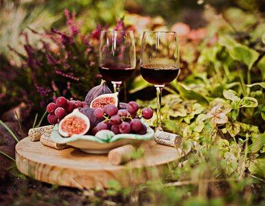 Czy wino jest na pewno wegańskie?