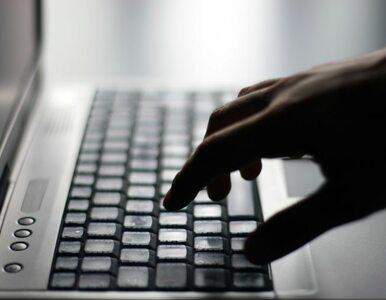 Polska policja i FBI razem ws. cyberprzestępczości