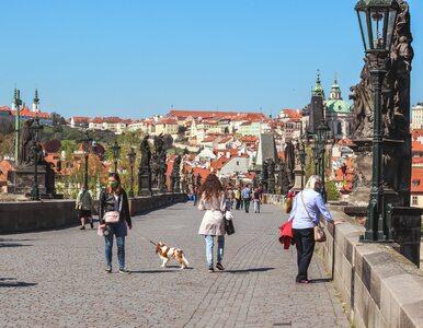 Rekordowa liczba zakażeń w Czechach. Wciąż obowiązuje stan wyjątkowy
