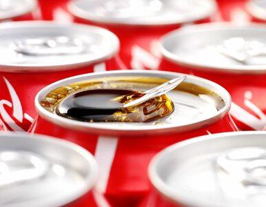Coca-Cola zainwestuje w Polsce ponad 500 mln zł