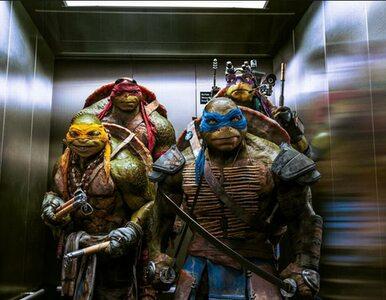 """""""Wojownicze żółwie"""" powrócą... za dwa lata"""