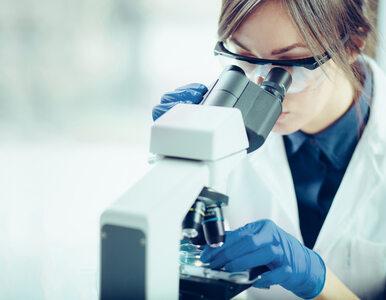 W Łodzi powstało Akademickie Centrum Wirusologii