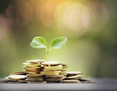 Inwestycje dla początkujących. W co inwestować: akcje, obligacje, lokaty?