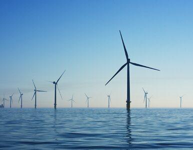 Farma wiatrowa na Bałtyku otwarta. Kosztowała 1,2 mld euro