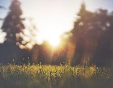 Wtorek słoneczny w całym kraju. W kolejnych dniach coraz cieplej